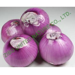 China Chinese Onion, Purple Onion, Fresh onion, Cheap Spicy Onion on sale