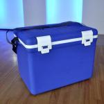 Buy cheap Mini fridge cooler box from wholesalers