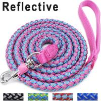 Buy cheap Mountain Climbing Braided Nylon Rope Dog Leash , Dog Training Leash With Lock Catch from wholesalers