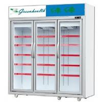 Buy cheap Upright Glass Door Freezer Frozen Display For Ice Cream Frozen Meat from wholesalers