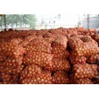 Buy cheap Mesh Bagged Natural Fresh Onion Including Vitamins And Minerals No Budding from wholesalers