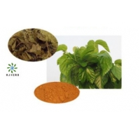 Buy cheap Mulberry Leaf Extract Powder 100% Herb Extract Powder product