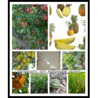 Buy cheap pineapple fertilizer fruit trees from wholesalers