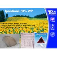 Buy cheap Systemic Fungicide For Apple Trees / Berry Fruit , Iprodione 50% WP from wholesalers