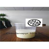 Buy cheap 6-8 PH Phantom Liquid Insecticide CAS 122453-73-0 Limited Systemic Activity from wholesalers