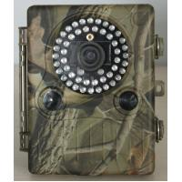 Buy cheap NEW 12MP trail/scouting cameras, 2.5inch Lcd,48PCS LED lights,Optical filter,With zoom fun from wholesalers