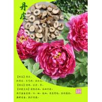 Buy cheap China wholesale paeonol 99% peony bark extract -- Paeonia suffruticosa Andr. from wholesalers