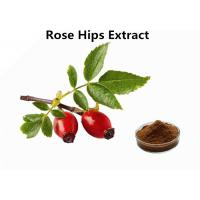 Buy cheap Standard Fruit Extract Powder Herbal Extract Water Extracted Rose Hips Extract Powder from wholesalers