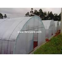 Buy cheap Vegetable Greenhouse,Greenhouse Equipments,Greenhouse Kits from wholesalers