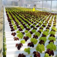 Buy cheap 100% Virgin Pvc Pipe Large Plastic Greenhouse Elliptical Shape Hydroponic Nft System from wholesalers