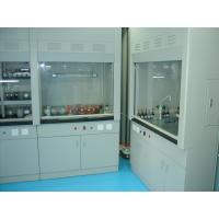 China lab ventilation equipment, pp ventilation cabinet,lab fume hood in malaysia on sale