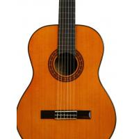 Buy cheap Customized Classical Washburn C40 Nylon String Guitar Natural Single Cutaway from wholesalers