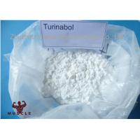 Buy cheap 99% Purity Strongest Testosterone Steroid Turinabol Clostebol Acetate Legal Muscle Building Powder from wholesalers