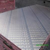 Buy cheap Black WBP glue Poplar Core  film faced plywood  for Construction formwork from Greentrend from wholesalers