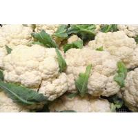 Buy cheap Chinese White Organic Blanched Freezing Fresh Cauliflower , 13 - 15cm Length from wholesalers