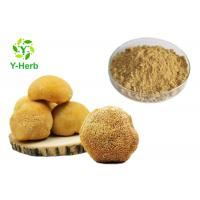 Buy cheap Lion's Mane Mushroom Powder Hericium Erinaceus Extract Polysaccharide 10%-50% from wholesalers