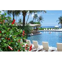 Buy cheap Eco-friendly Geosynthetic Clay Liner for swimming pool product