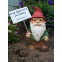 China resin garden gnome on sale