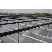 Buy cheap PC Sheet Commercial Outdoor Greenhouse , Cooling Pad Greenhouse Shading Systems from wholesalers