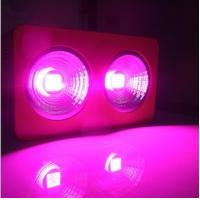 Buy cheap High Luminous Efficiency LED Grow Lights for Green Houses 150W from wholesalers