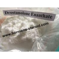 Buy cheap Healthy Drostanolone Steroid Dehydroepiandrosterone DHEA Hormone Supplement Hair Growth CAS 53-43-0 from wholesalers