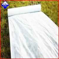 Buy cheap 4% UV Resistant Agriculture Non Woven Fabric , Ground Cover Weed Control Fabric product