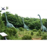 Buy cheap Sunproof Life Size Dinosaur ModelsFor Science And Technology Exhibition product