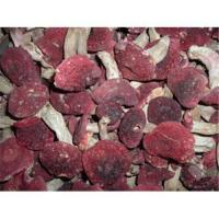Buy cheap Rare Wild Mushroom / authentic wild red mushrooms from wholesalers