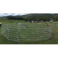 Buy cheap 15m Diameter Horse Round Yard Panel 22Pcs incl. 3m tall Gate 30x60mm from wholesalers
