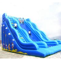 Buy cheap Giant0.45+0.55 MM Pvc Tarpaulin Inflatable Slide For Childern In Outdoor / Intdoor With Pool from wholesalers