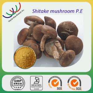 China China manufacturer sales high quality 30% polysaccharides shitake mushroom extract on sale