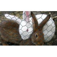 """Buy cheap Rabbit Wire Netting 16 gauge, 1"""" hex mesh Poultry fence chicken mesh from wholesalers"""