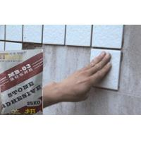 Buy cheap Outdoor Strong Waterproof Tile Adhesive , Marble And Mosaic tiles adhesive product