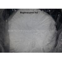 Buy cheap Safety Local Anesthetic Powder Anti Paining Bupivacaine Hcl Powder CAS 14252-80-3 from wholesalers