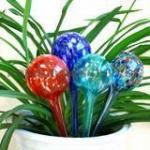 Buy cheap Aqua Globes from wholesalers