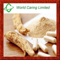 Buy cheap 100% natural High quality Astragalus P.E/Herbal Extract for Blood Clucose from wholesalers