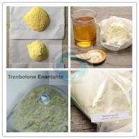 Buy cheap Super Strong Quality Raw Trenbolone Enanthate with 99% Purity/Tren enan from wholesalers