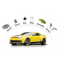 Buy cheap Auto Paint Protection Film Anti Fouling Outdoor 7 - 10 Years Durability from wholesalers