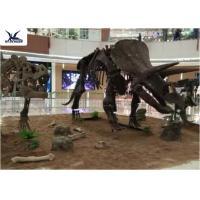 Amusement Park Facility Life Size Dinosaur Skeleton Replica Artificial Replica Model