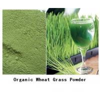 Buy cheap Fresh All Natural Wheatgrass Powder for Health Care Wholesale from wholesalers