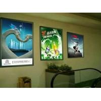 High resolution Backlit Posters Printing / Environmentally large poster printing