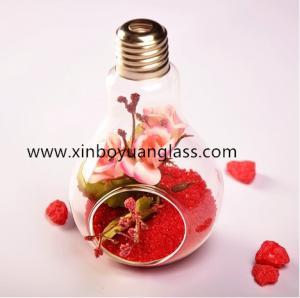Hanging bulb glass vase air plant votive