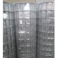 "Quality Hot-dipped Galvanized Welded Wire Mesh   3""X2"",2.7mm,1.2-1.8m for sale"