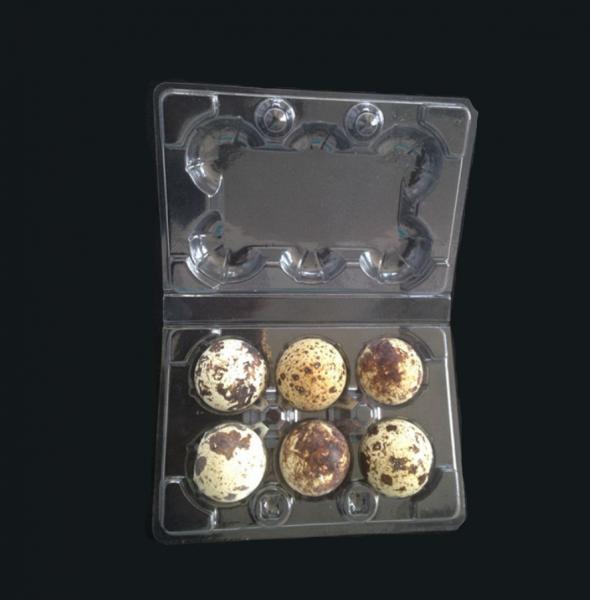 Quality Disposable plastic quail egg tray 6 holes quail egg tray plastic egg tray for for sale