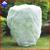 Buy cheap 100% Virgin PP Garden Weed Barrier Fabric , Greenhouse Non Woven Ground Cloth from wholesalers