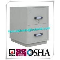 China Fire Resistant Filing Cabinets , 2 Drawer Fireproof File Cabinets For Documents on sale
