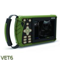Buy cheap Palm  Veterinary Ultrasound machine color doppler System VET 6 for animal pregnancy/disease diagnostic from wholesalers