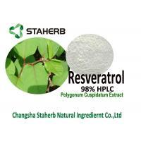 Resveratrol 98% HPLC Polygonum Cuspidatum Root Extract Powder For Life Extension