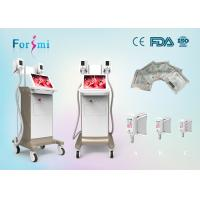 Buy cheap beautiful appearance!!15 inch big screen cryolipolysis weight loss freeze fat cryotherapy beauty machine price China from wholesalers
