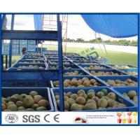 Buy cheap Fresh Pineapple / Mango Juice Processing Plant With Can Packaging Machine from wholesalers